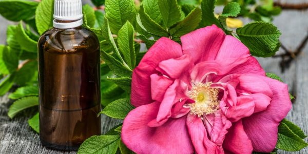 huile-essentielle-ciste-ladanifère
