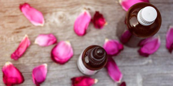 Quels sont tous les bienfaits de l' huile rose musquée (rosier muscat) ?