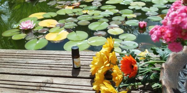L'aromathérapie des enfants, dans quel cas utiliser des huiles essentielles ?